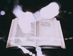 Novel Life of Mi Gratis Lengkap Full Episode Bahasa Indonesia