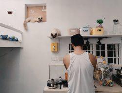 10 Warna Cat Rumah Simpel dan Keren!